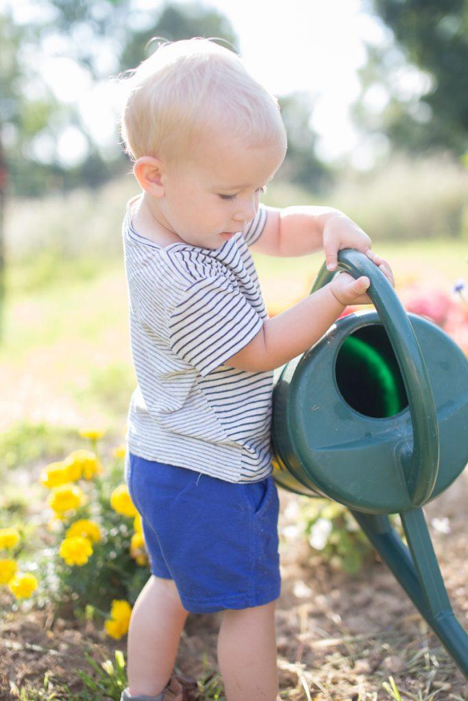 a little gardener's life